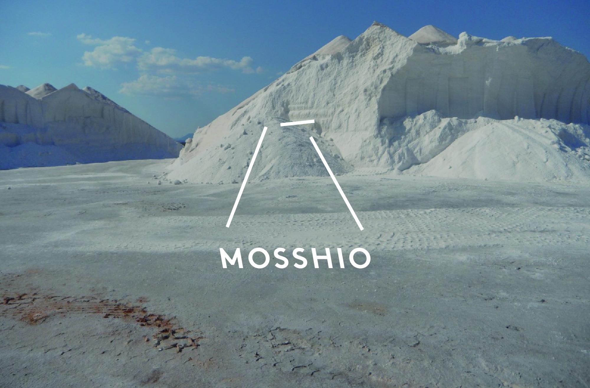 mosshio_cover2